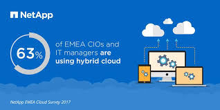 Netapp_cloud_survey2017